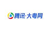腾讯大粤网品牌网站建设